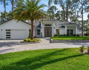 10129 Lone Tree Lane, Orlando image