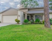 15710 Pinto Place, Tampa image