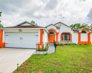 37818 Trilby Road, Dade City image