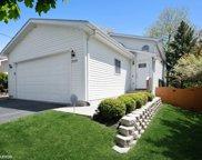 725 Ridgewood Street, Round Lake image