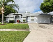 11204 Andy Drive, Riverview image