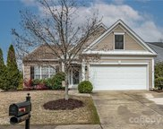 8603 Robinson Meadow  Court, Charlotte image