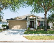 624 White Flower Way, Brooksville image