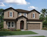 11536 Navel Orange Way, Tampa image