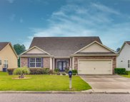 825 Tilly Lake Road, Conway image