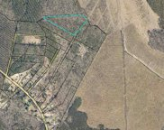 TBD 8.9 Acres off of Powell Rd., Georgetown image