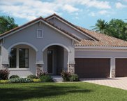 11961 Cinnamon Fern Drive, Riverview image