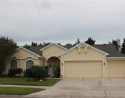 13543 Buckhorn Run Court, Orlando image