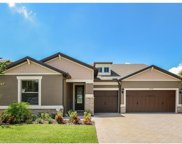 10415 Scarlet Chase Drive, Riverview image