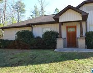 466 Red Valley Rd, Remlap image