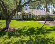 12028 Gray Birch Circle, Orlando image