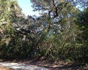 16 Poormans Pepper Trail, Bald Head Island image