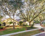 18240 Clear Lake Drive, Lutz image