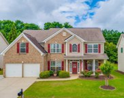 203 Molano Court, Greenville image