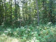 #7 Timberwood Acres, Petoskey image