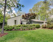 9  Hollyberry Woods, Lake Wylie image