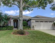 12305 Wycliff Place, Tampa image
