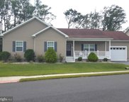 32309 W Haven Wood Dr, Frankford image