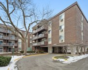 1331 S Finley Road Unit #301, Lombard image
