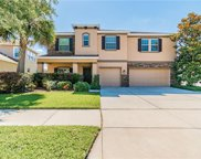 11322 Coventry Grove Circle, Lithia image
