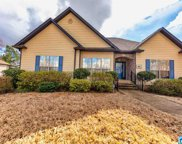 3436 Smith Sims Rd, Trussville image