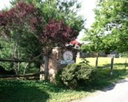 Lot 20 Autumn Woods, Sweetwater image
