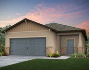 11421 Green Harvest Drive, Riverview image