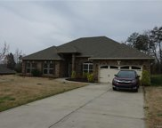 245  Mills Plantation Circle, Troutman image