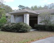 14330 Dabney Court, Spring Hill image