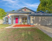 2926 Folklore Drive, Valrico image