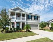 5921 Chert Hill Lane, Lithia image