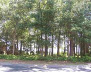 4822 Bucks Bluff Dr Lot 591, North Myrtle Beach image