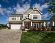13111  Red Vulcan Court, Charlotte image