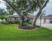 2848 Mossy Timber Trail, Valrico image