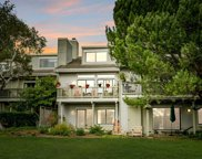48 Eucalyptus Knolls, Mill Valley image