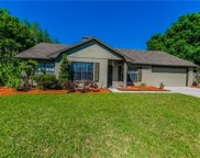 12215 Snead Place, Tampa image