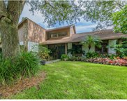 12101 Cypress Hollow Place, Tampa image
