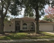 316 Forrest Crest Ct, Ocoee image