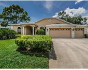 1793 Pipers Meadow Drive, Palm Harbor image