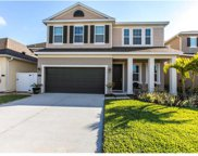 11323 Quiet Forest Drive, Tampa image