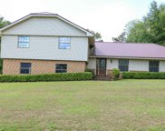 121 SW BRIARBROOK PLACE, Lake City image