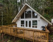 71267 NORTH SHORE  DR, Birkenfeld image