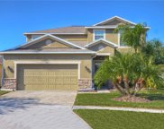 3491 Marmalade Court, Land O Lakes image