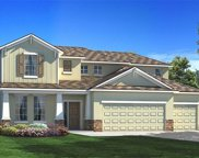 11927 Cinnamon Fern Drive, Riverview image