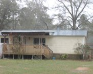 977 Hassell, Tallahassee image