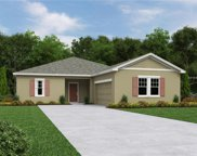 15342 Sugar Citrus Drive, Winter Garden image