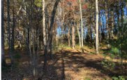 19 Fiddlers Cove, Blairsville image