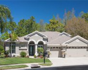 14120 Lincolnshire Court, Tampa image