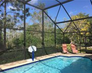 6557 Autumn Woods Blvd, Naples image