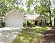42 Cruz Bay Place, Pawleys Island image